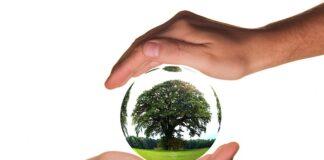 Ekologia pomoże nam ochronić planetę